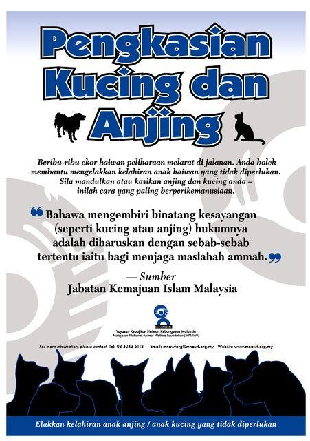 hukum pengkasian anjing dan kucing